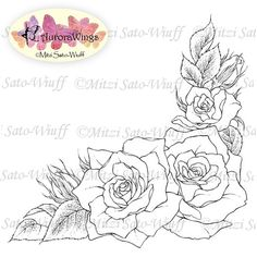 Learn To Draw A Realistic Rose - Drawing On Demand Flower Pattern Drawing, Flower Art Drawing, Flower Drawing Tutorials, Floral Drawing, Plant Drawing, Coloring Books, Coloring Pages, Calligraphy Signs, Illustration Blume