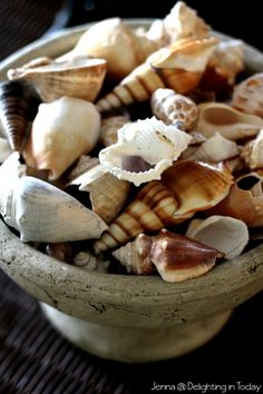 Collect shells from vacation and group them in a pretty bowl