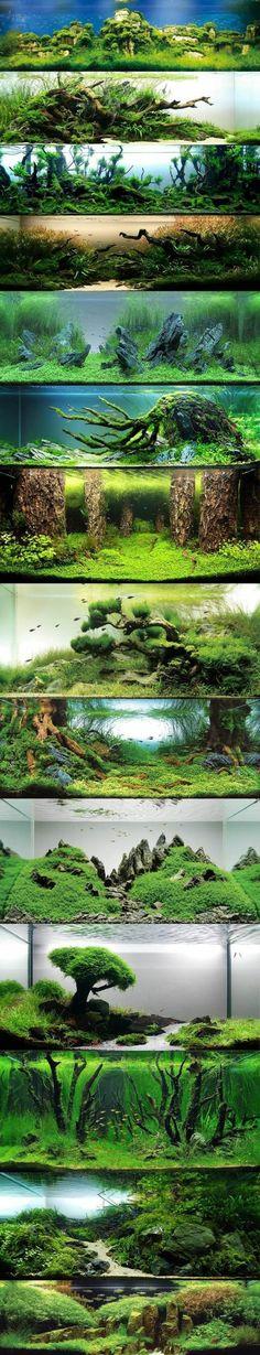 die besten einrichtungsideen fur aquarium aquarium deko aquarium einrichten