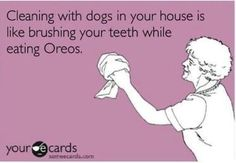 Cleaning with dogs in the house is like brushing your teeth while eating oreos