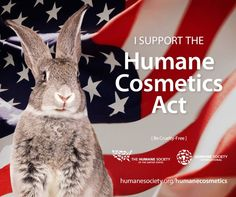 End animal testing for cosmetics in the U.S.- support the #HumaneCosmeticsAct!