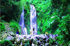 7 best info wisata alam puncak bogor images bogor brochures catalog rh pinterest com