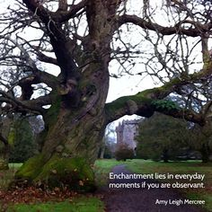 """Enchantment lies in"