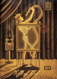 X-Ray Eel - David Delamare
