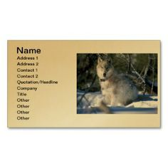 North American Timber Wolf in Snow Business Card printed on a gold colored background.  Other colors available.
