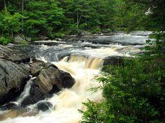 Mills Falls, Keji