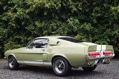 Ford Mustang Shelby GT500 6.0 2dr