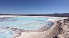 No Atacama existem dois passeios que visitam lagoas de sal com mais concentração de sal que o Mar Morto, em Israel, onde é impossível afundar! Chile, Tours, America, Beach, Water, Israel, Outdoor, Dead Sea, Ponds