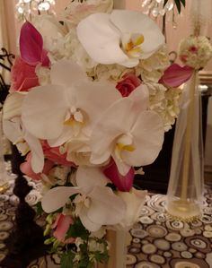 Phaleanopsis Orchids are just gorgeous flowers to blend with Roses for an Elegant Ceremony Orchids, Roses, Touch, Weddings, Pop, Elegant, Flowers, Classy, Popular