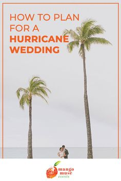 Worried about a hurricane at your destination wedding? Here are 3 ways to plan for a hurricane wedding by destination wedding planner, Mango Muse Events. Diy Your Wedding, Wedding Prep, Wedding Dinner, Wedding Dj, Free Wedding, Wedding Events, When To Get Married, Getting Married, Destination Wedding Planner