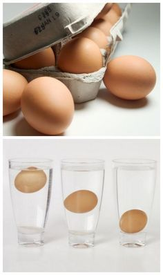 How to Test an Egg's Freshness? Submerge them in water. A fresh egg will sink to the bottom and a rotten egg will float. Eggcellent hack!