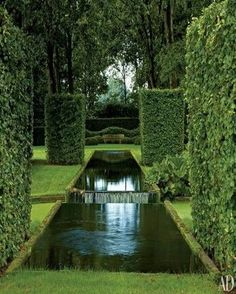 Hedge and water features with strong lines