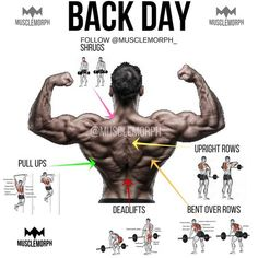 back day back exercise back workout gym bodybuilding fitness musclemorph musclemorphsupps…. Back Day Back Exercise Back Training Gym Bodybuilding Fitness Muscle Change musclemorphsupps …. Fitness Workouts, Gym Workout Tips, Weight Training Workouts, Fitness Tips, Fitness Motivation, Week Workout, Daily Motivation, Workout Fitness, Muscle Building Workouts