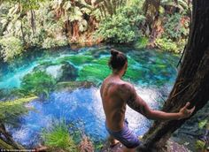 MailOnline Travel has compiled some of the most breathtaking examples of crystal-clear water from around the globe; from Havelock Island in India's Bay of Bengal, to Jökulsárlón in Iceland. Travel Log, Travel News, Travel Advice, Havelock Island, Bay Of Bengal, Blue Springs, Crystal Clear Water, Iceland, New Zealand