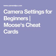 Camera Settings for Beginners   Moose's Cheat Cards