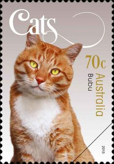 Stamp from Australia. About time our favourite pets were acknowledged with a stamp. Vintage Stamps, Vintage Cat, Art Postal, Orange Cats, Fauna, Mail Art, Stamp Collecting, Poster, I Love Cats
