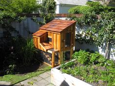 Island chicken coop.  Holds up to 4 hens.