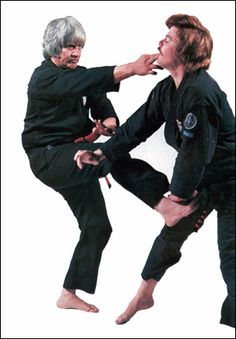Kenpō has also been appropriated as a modern term: a name for multiple martial arts that developed in Hawaii due to cross-cultural exchange between practitioners of Ryukyuan martial arts, Chinese martial arts, Japanese martial arts and multiple additional influences. In the United States, kenpo is often referred to as Kenpo Karate. Ed Parker is the most prominent name in the Mitose lineage