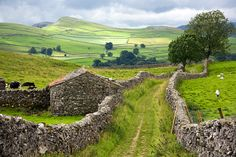 """"""" """"I suppose the pleasure of country life lies really in the eternally renewed evidences of the determination to live. Photo: Dry stone Walls of the Yorkshire Dales, England. Yorkshire England, Yorkshire Dales, North Yorkshire, Cornwall England, England Countryside, British Countryside, England And Scotland, England Uk, Oxford England"""