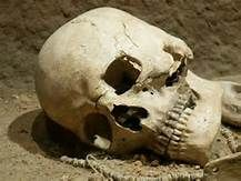 skull and war - Yahoo Image Search Results