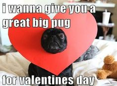9 Best Valentine S Day Funny Cards And Memes Images Jokes Funny