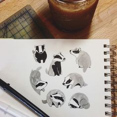 Happy Monday! A little cete of badgers (had to look up that #collectivenoun) to warm up for mammal drawing. Plus I made cold brew (it's fine)! #sketchbook #badger #pageofanimals #ink
