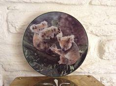 Royal Doulton Koala Bear Plate by MerryLegsandTiptoes on Etsy