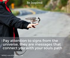 Pay attention to signs from the universe, they are messages that connect you with your souls path. Wind Haven Shaman