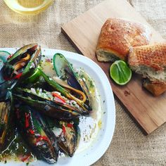 BBQ mussels. So easy on the Barbie. Recipe and easy how-to video at fresh.co.nz Mussels, New Zealand, Bbq, Barbie, Fresh, Easy, Recipes, Barbecue, Barbecue Pit