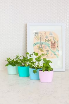 Upcycled Aveeno lotion containers make a pretty indoor herb garden. Love recyclable products! #caretorecyle #partner