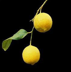Do you ever feel like life gives you lots of lemons? Maybe if you focus and #thinkpositive you will find that there are more blessings than you realized.   http://www.itsironik1.blogspot.com