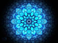 lotus power