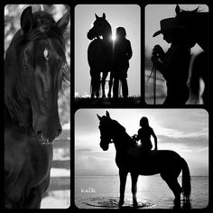 Horses - Collage made by KaDK's World - https://www.pinterest.com/k5606/kadks-world-of-collages-and-moodboards/