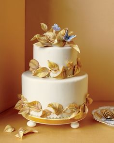 "20 Years of Gorgeous Wedding Cakes by Pastry Chef Ron Ben-Israel ""When people realized that they could have a custom cake made, then I started to use the word, 'inspiration.'"" Pictured: Cake from the Winter 2012 issue of Martha Stewart Weddings. Beautiful Cakes, Amazing Cakes, Pretty Cakes, Ron Ben Israel, Unique Wedding Cakes, Cake Wedding, Ivory Wedding, Dream Wedding, Occasion Cakes"