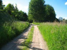 """Szlak rozpoczyna się na terenie Ekomariny nad j. Czos w Mrągowie, prowadzi najdłuższą promenadą Mazur nad tym jeziorem. W południowej części jeziora szlak prowadzi nad rzeką Dajną, która jest szlakiem kajakowym do Świętej Lipki. Warto zboczyć ze szlaku i wjechać na najwyższe wzniesienie okolicy (180 m. n.p.m). Położony jest tutaj całoroczny Ośrodek Sportowy """"Góra Czterech Wiatrów"""".  www.it.mragowo.pl"""
