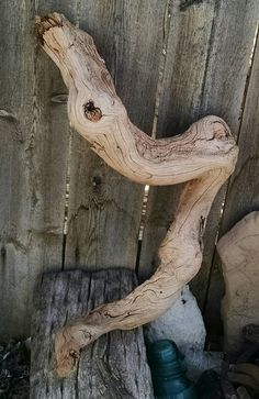 Raw Driftwood For Crafts, Photo Prop, Zen Garden, Wedding Decorations, Southwestern Décor, Air Plant, Driftwood Art, Abstract Wood Art by TheDriftingStones on Etsy