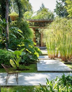Amazing Fresh Frontyard and Backyard Landscaping Ideas Enjoy collection backyard styles and let us find your thoughts about this garden design ideas.Enjoy collection backyard styles and let us find your thoughts about this garden design ideas. Tropical Landscaping, Modern Landscaping, Garden Landscaping, Landscaping Ideas, Backyard Ideas, Tropical Gardens, Tropical Garden Design, Garden Paving, Backyard Patio