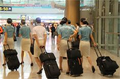 World stewardess Crews: Passengers like to capture behind the crew Airline Uniforms, Korean Air, Asian Babies, Cabin Crew, Flight Attendant, Behind, Girls, Daughters, Maids