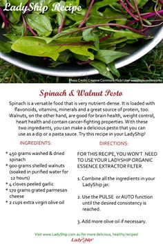 Want a delicious yet healthy dip? Try this Spinach and Walnut Pesto recipe!