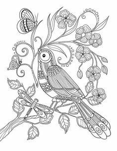 Marica Zottino on behance - birds