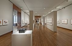 Museo de Arte The Chazen / Machado and Silvetti Associates