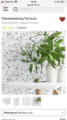 Terrazzo, Modern, Plants, Trendy Tree, Plant, Planets