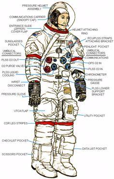 Apollo EVA suit - Google Search