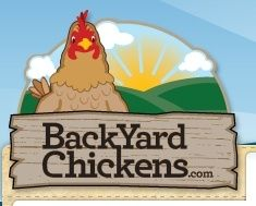 BackYard Chickens... a fountain of knowledge is just a click away