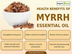 The health benefits of Myrrh Essential Oil can be attributed to its properties like anti microbial, astringent, expectorant, anti fungal, stimulant, carminative, stomachic, anti catarrhal, diaphoretic, vulnerary, antiseptic, immune booster, circulatory, tonic, anti inflammatory and anti spasmodic.  	The essential oil of Myrrh is extracted from the resin of Myrrh. Myrrh, in scientific nomenclature system, is called Commiphora Myrrha and is a native to Egypt. While the resin was in use in…