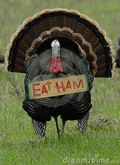 Eat ham!