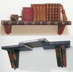 A true bookshelf  http://www.offbeatearth.com/dont-like-reading-other-uses-for-books/