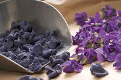 Spécialité Provençale_La violette,fleur d'amour… Miummm