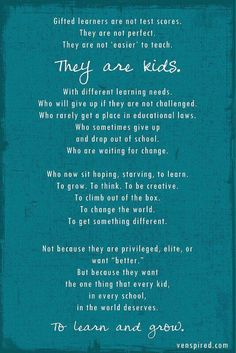 Gifted children or twice exceptional.