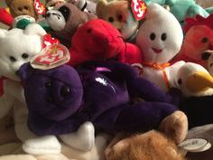 Memoris of a Collector's Daughter: The Sad Truth of the Beanie Baby Supply & Demand